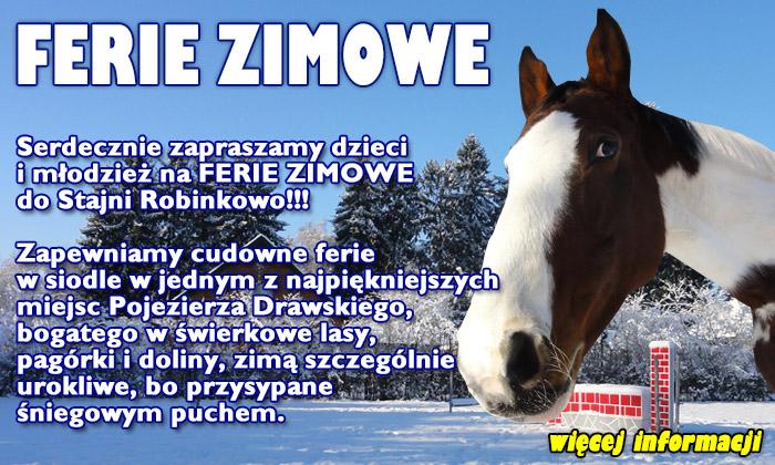 Ferie zimowe z końmi